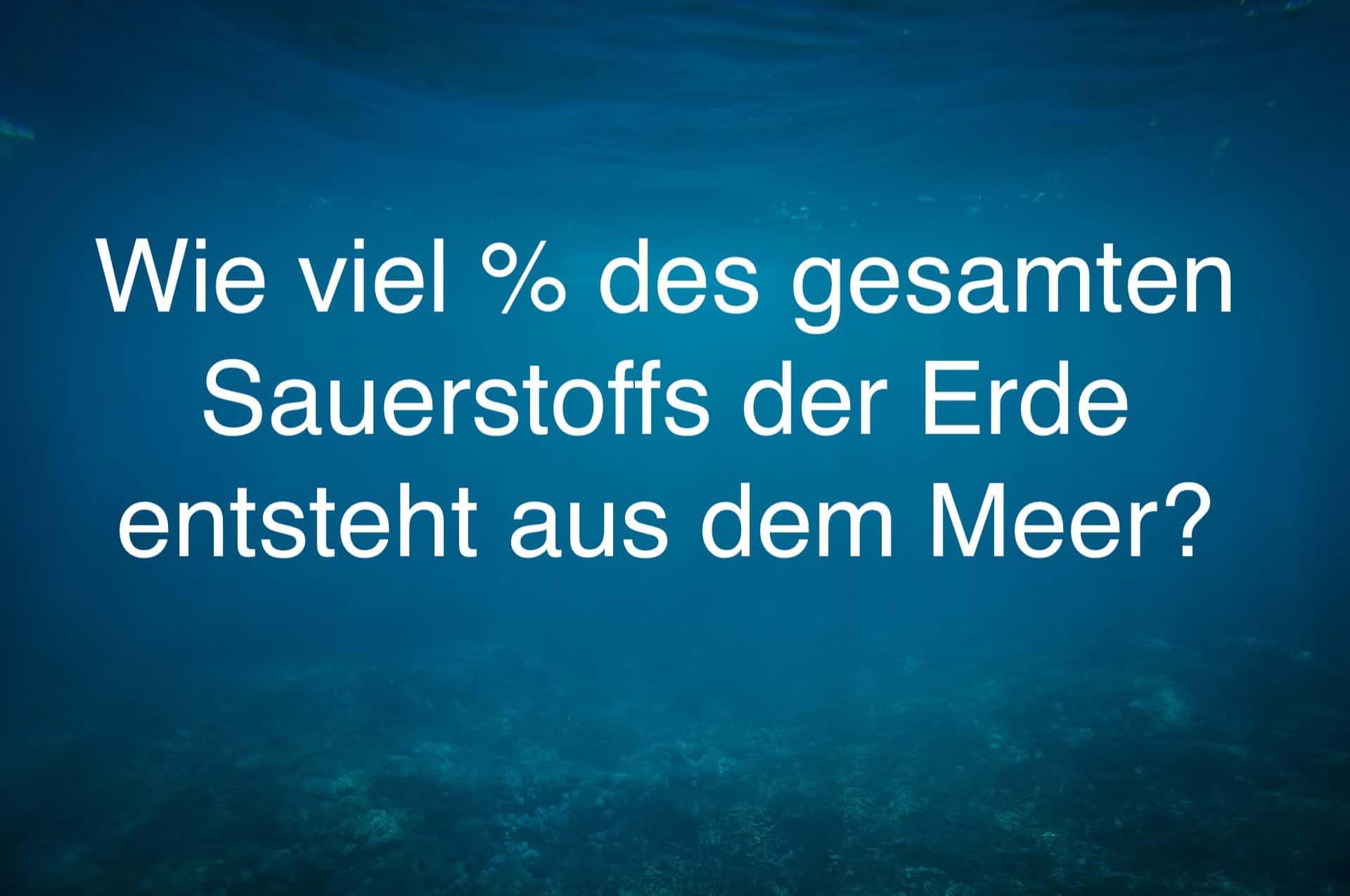Meer ist Leben