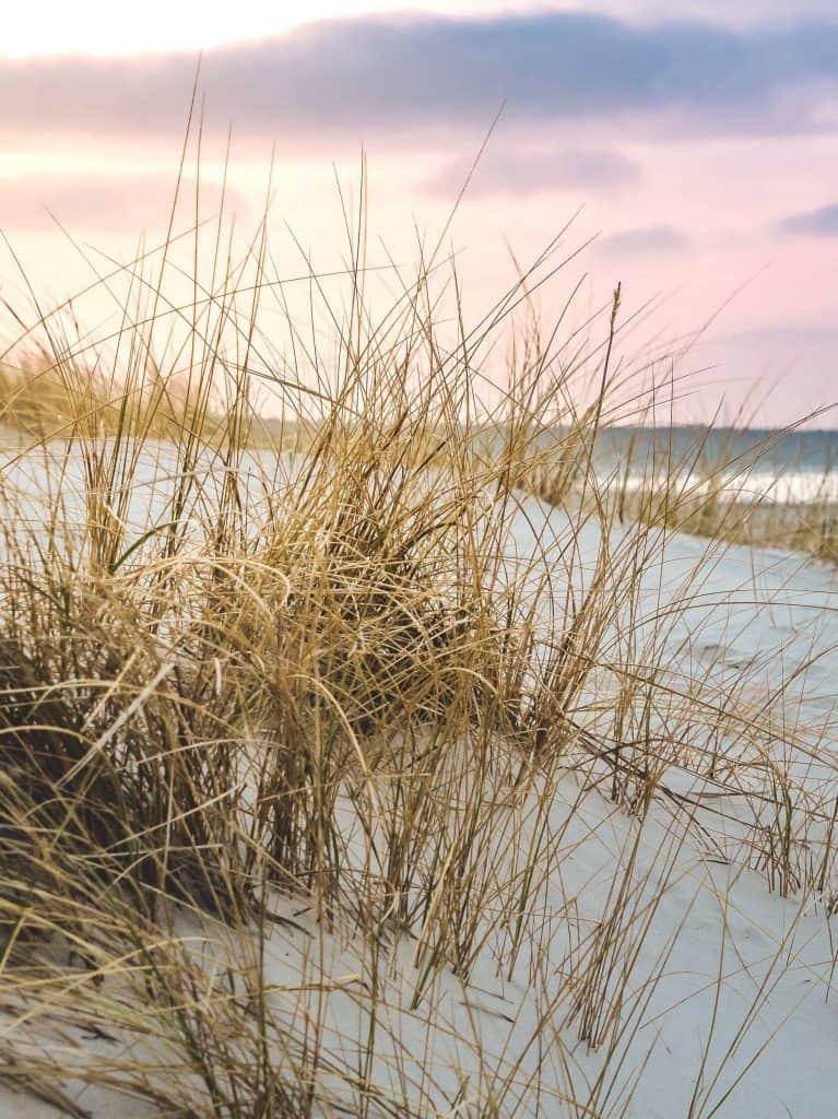 Ostsee oder Nordsee? Urlaub in Deutschland!