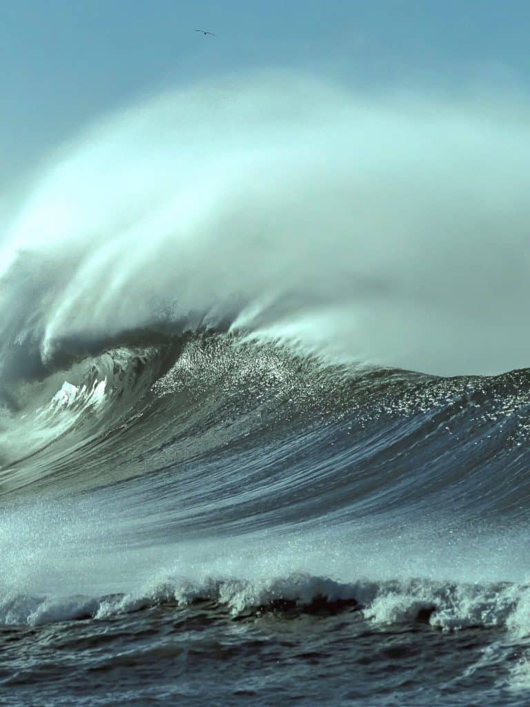 Maritimliebe - Ozeane der Erde
